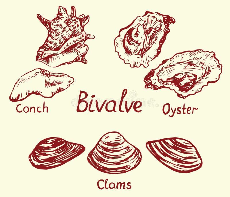 Tweekleppige reeks, kroonslak, oester en tweekleppig schelpdier, met inschrijving royalty-vrije illustratie