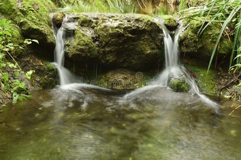 Tweeling kleine watervallen stock foto's