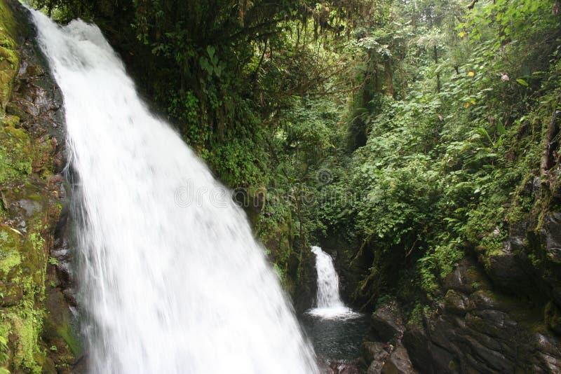 Tweeling Watervallen royalty-vrije stock foto