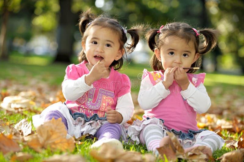 Tweeling zusters royalty-vrije stock afbeelding
