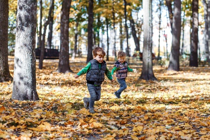 Tweelingbroers in de herfstouside in het park stock foto's
