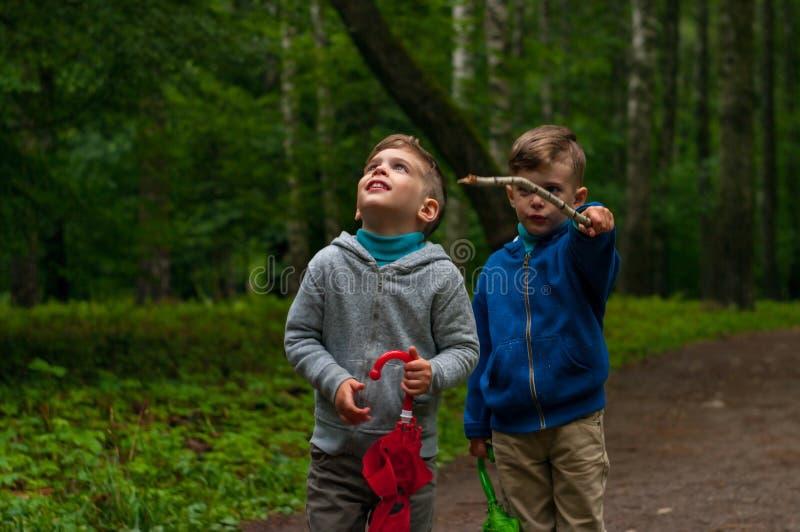 Tweelingbroers in het bos royalty-vrije stock foto