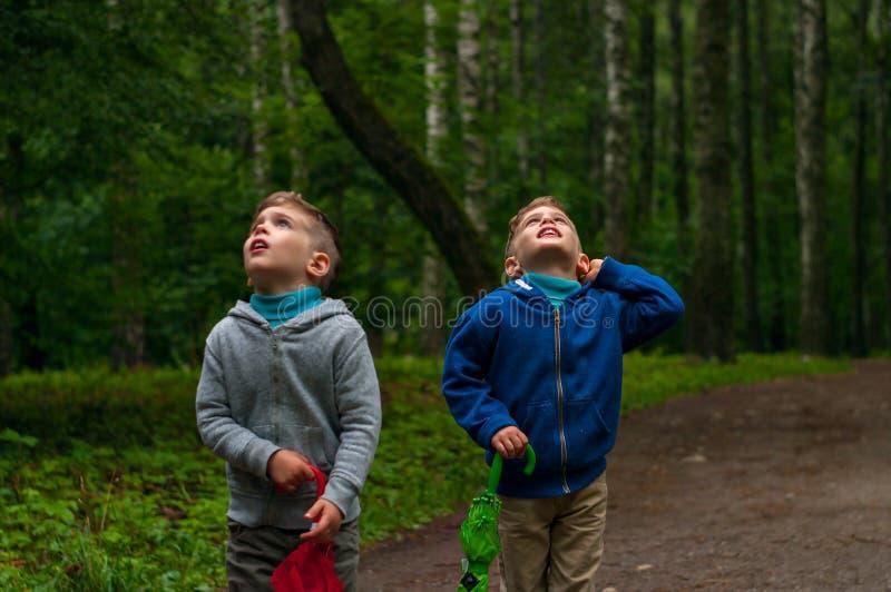 Tweelingbroers in het bos stock fotografie