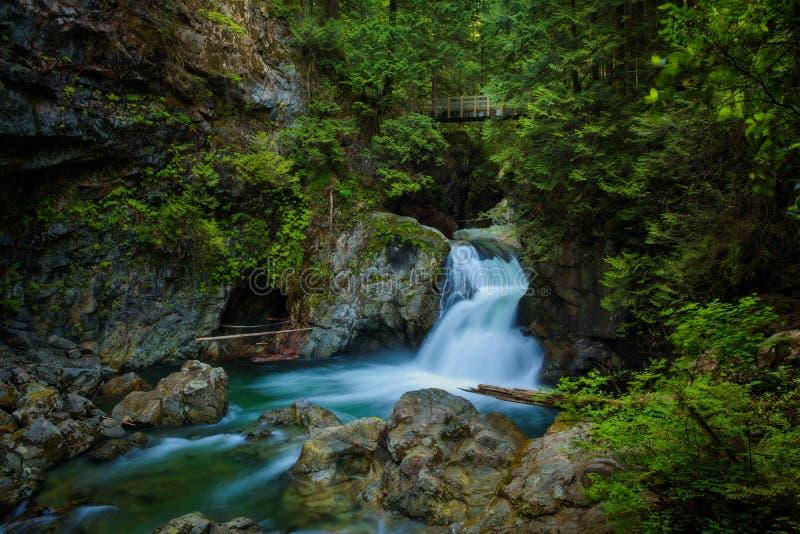 Tweelingdalingen van Lynn Canyon Park, Noord-Vancouver, Canada royalty-vrije stock afbeeldingen