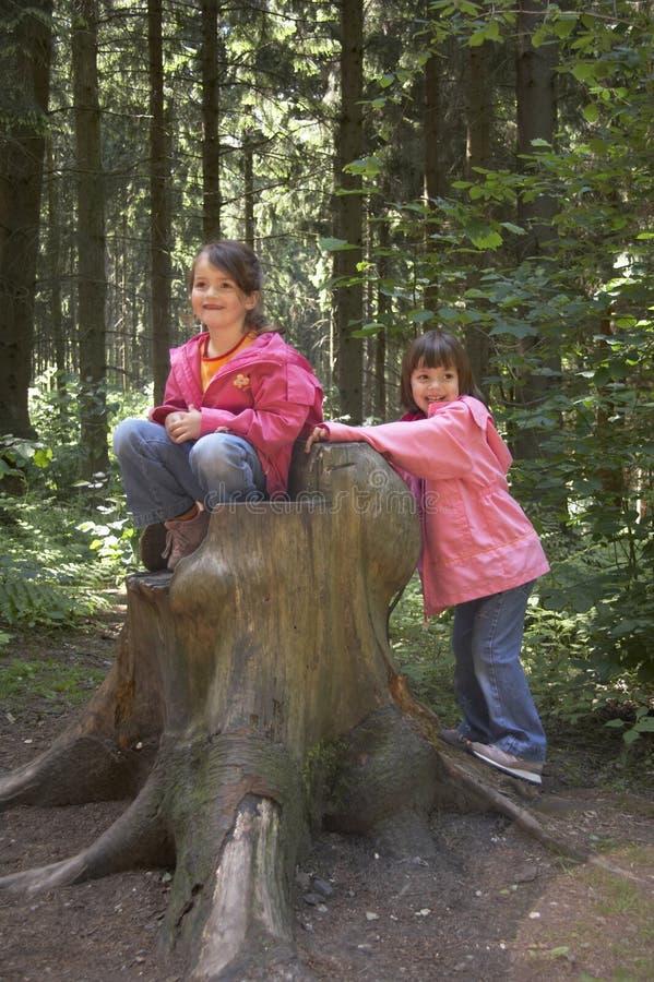 Tweelingen die op een boomstomp spelen royalty-vrije stock afbeelding