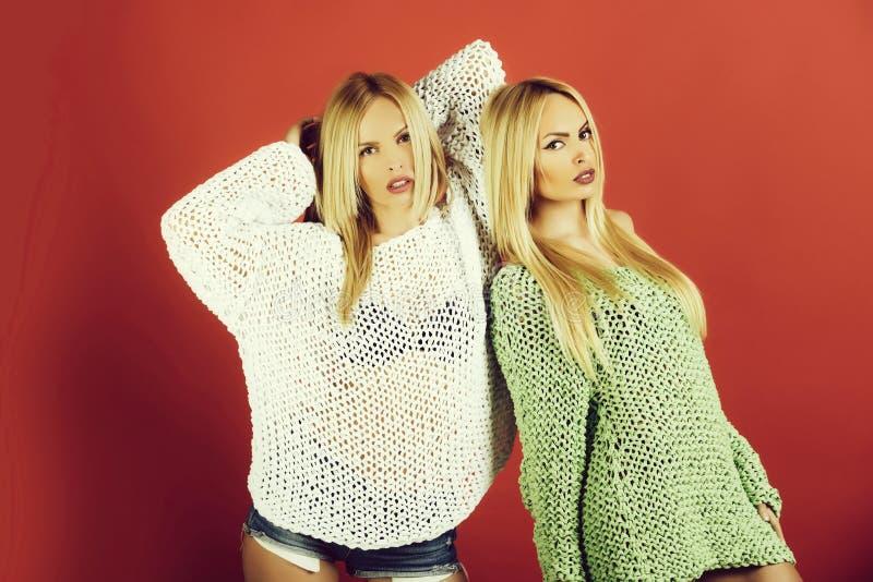 Tweelingen mooie vrouwen met modieus, lang haar en sexy sweaters stock afbeeldingen