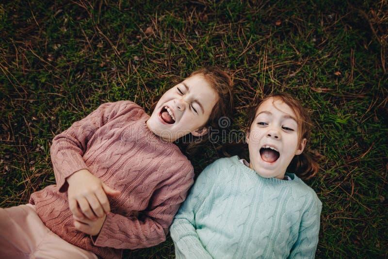 Tweelingenzusters die op het gras genieten van stock afbeeldingen
