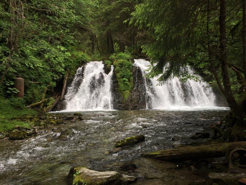 Tweelingwatervallen stock afbeeldingen