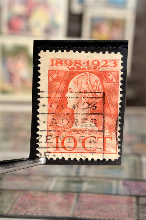 Tweezer holds postage stamp printed by Netherlands on topic Heads of State, Shows Queen Wilhelmina Reign jubilee stock image