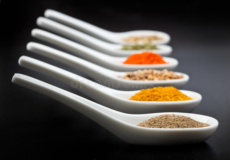 Twelve spices. On black background stock image