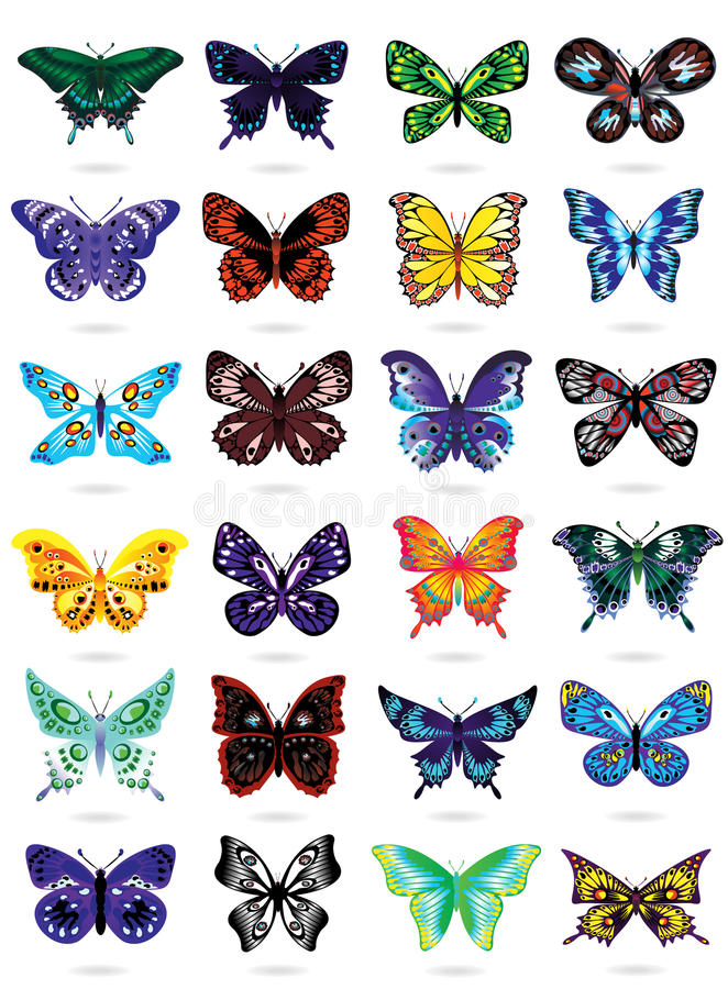 Twenty four colorful butterflies on white stock illustration