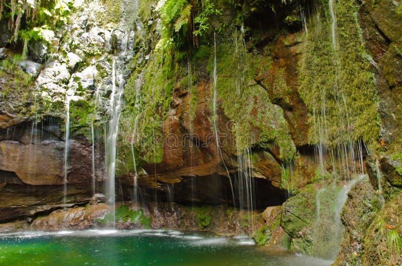 """Twentyfive 25 bronnen valt neer in een grot bij het levada kleine kanaal genoemd """"Rabacal"""" in Madera, Europa stock foto"""