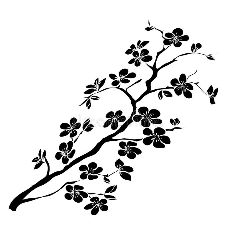 Twig cherry blossoms vector illustration