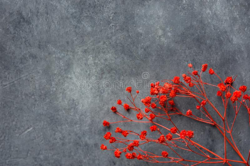 Twig of elegant small red decorative flowers on dark gray stone background. Wedding Valentine mothers day concept royalty free stock photo