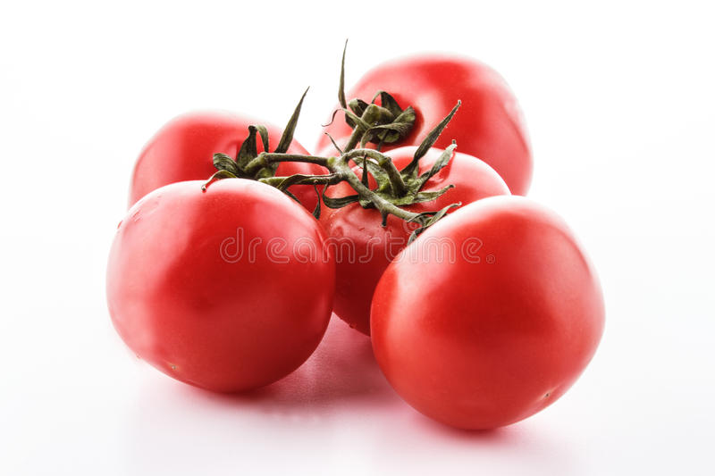 Twig tomatoes royalty free stock images