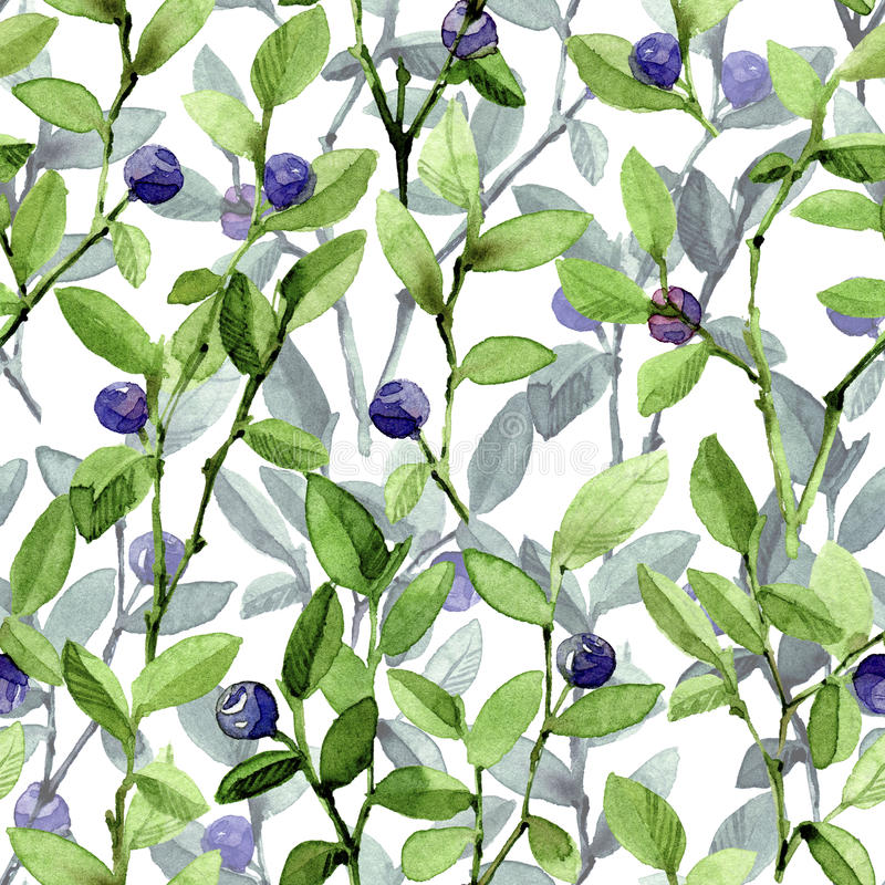 Twigs blueberry. watercolor seamless pattern vector illustration