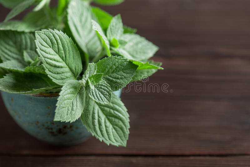 Twigs of mint in a cup on a wooden table with copy space stock image