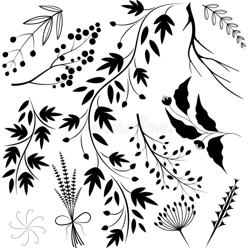 Twigs. A set of twigs for your design vector illustration