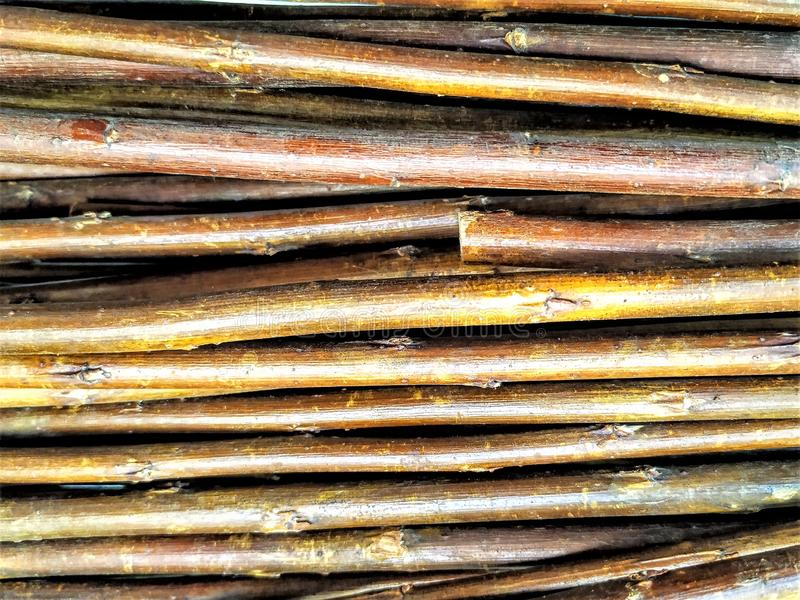 Twigs, tree branches, no leaves. Stacked together, smooth, brown. royalty free stock photography