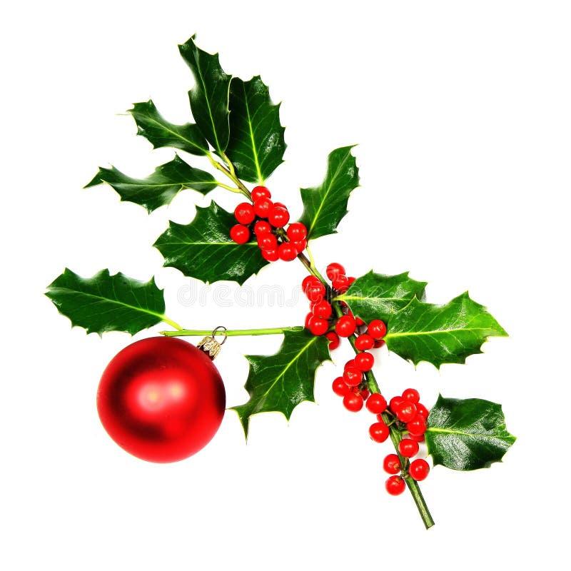 Twijg van de Hulst van Kerstmis stock foto's