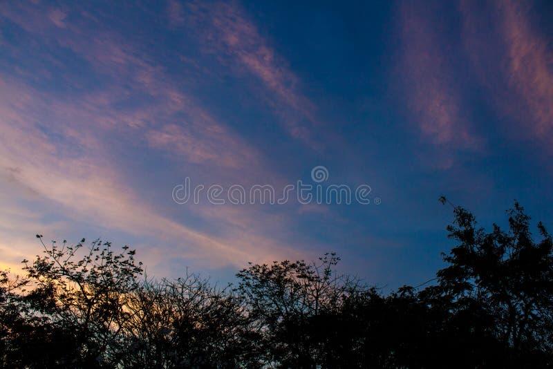 Twilight облачное небо стоковые фотографии rf