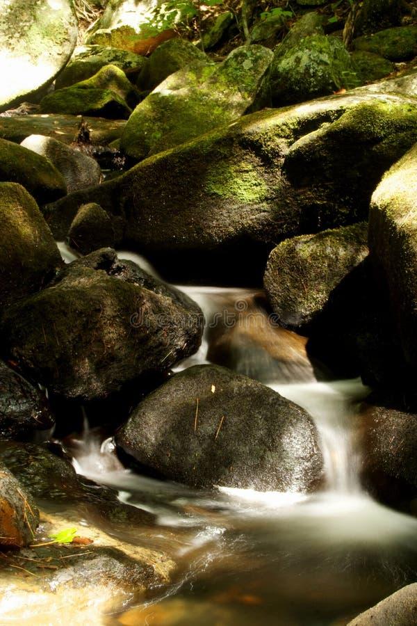 Twilight остров стоковые изображения