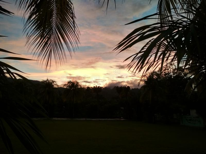 twilight coconut temaram stock images