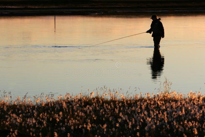 Download Twilight fishing stock photo. Image of dusk, fishing, person - 1447658