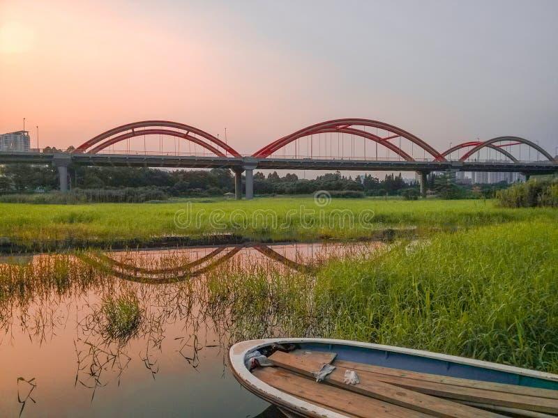 Honghu scenery. The twilight of honghu park, tranquility royalty free stock photos