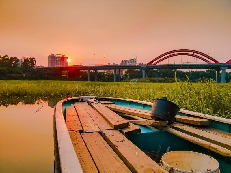 Honghu scenery. The twilight of honghu park, tranquility royalty free stock image