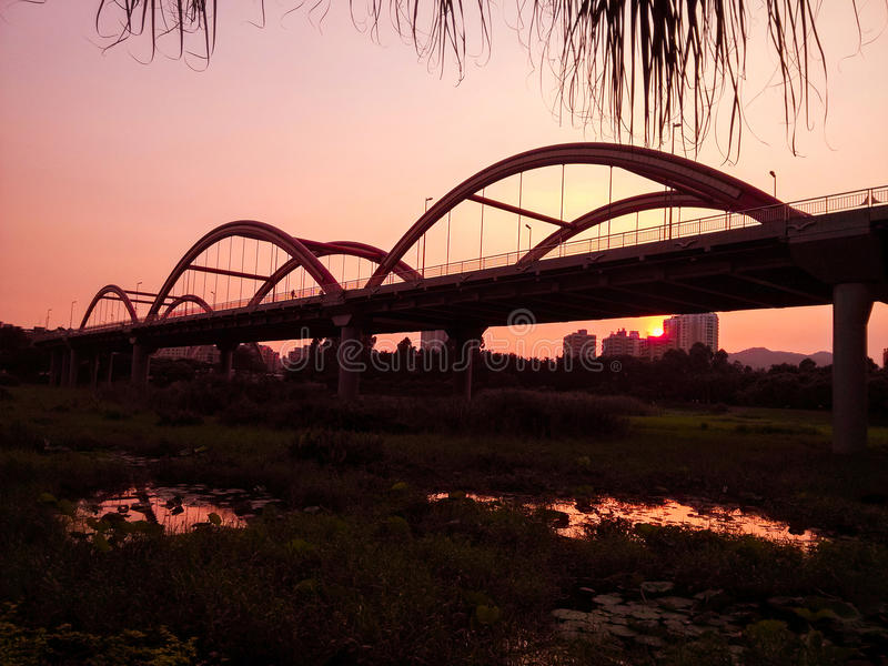 Honghu scenery. The twilight of honghu park, tranquility stock images