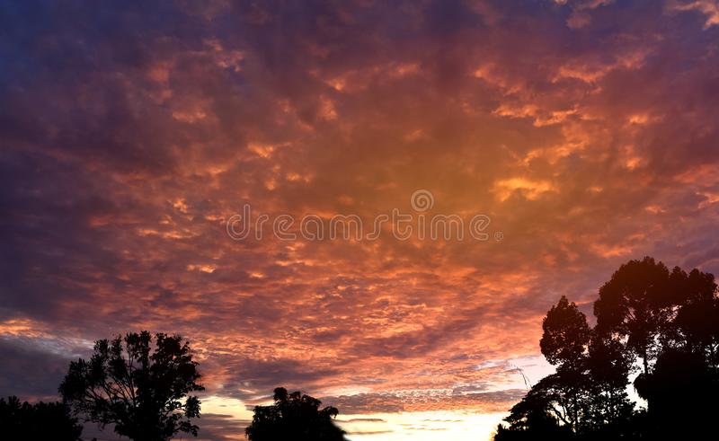 Twilight sky background over the forest in the countryside of Thailand. royalty free stock image