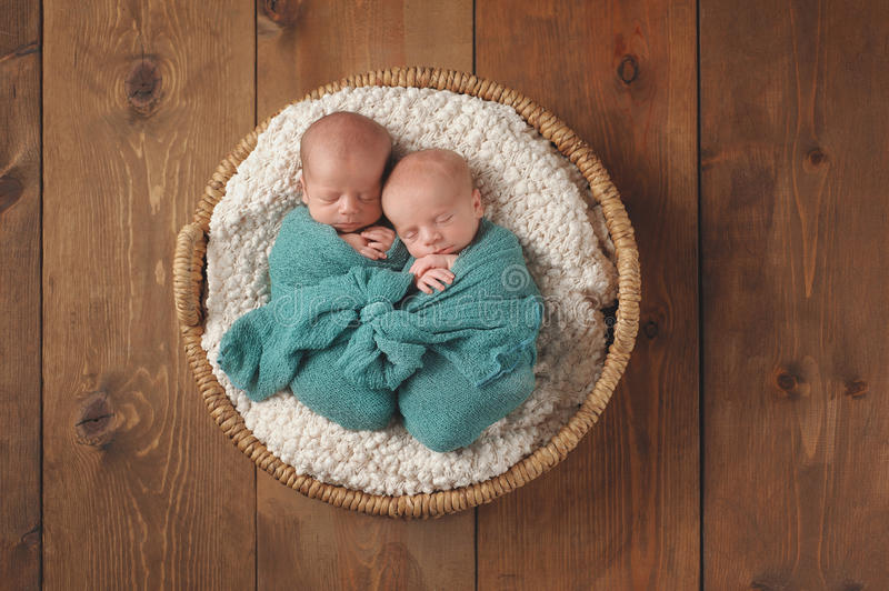 Twin Baby Boys Sleeping in a Basket. Four week old fraternal, twin baby boys swaddled in a turquoise blue wrap and sleeping in a wicker basket. Shot in the royalty free stock photos