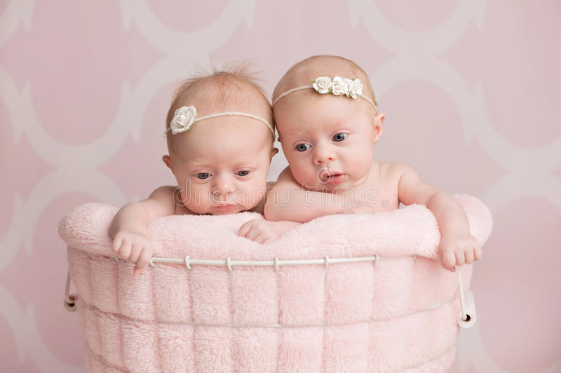 Twin Baby Girls Sitting in a Wire Basket stock photo