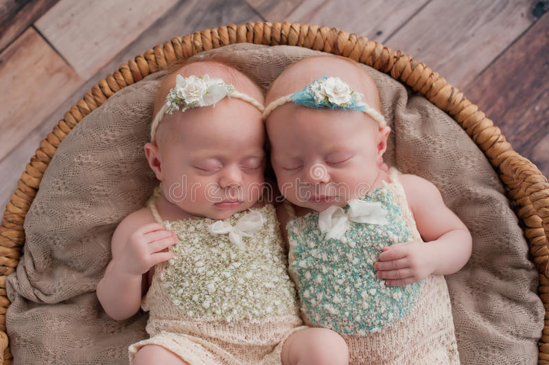 Twin Baby Girls Sleeping in a Wicker Basket stock photos