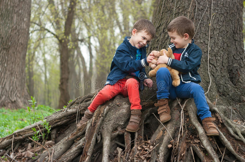 Twin brothers play in the forest royalty free stock photo