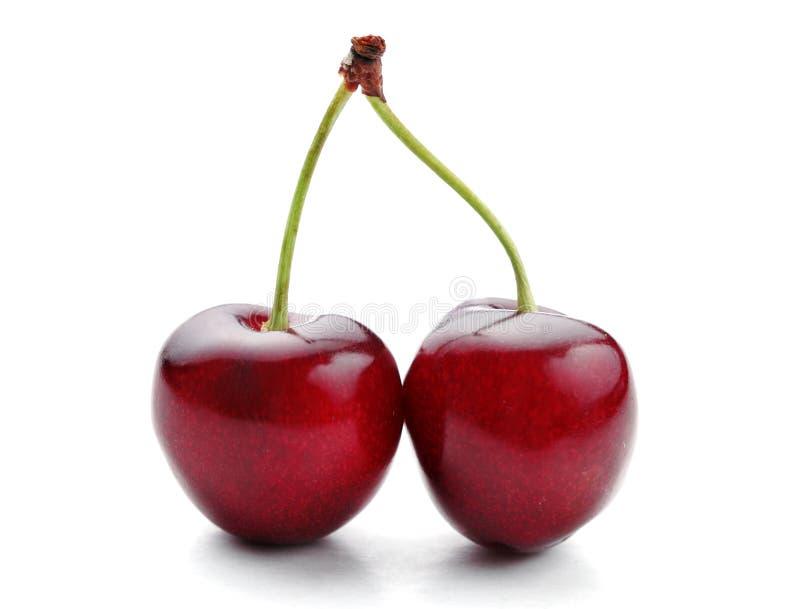 Twin cherries royalty free stock photos