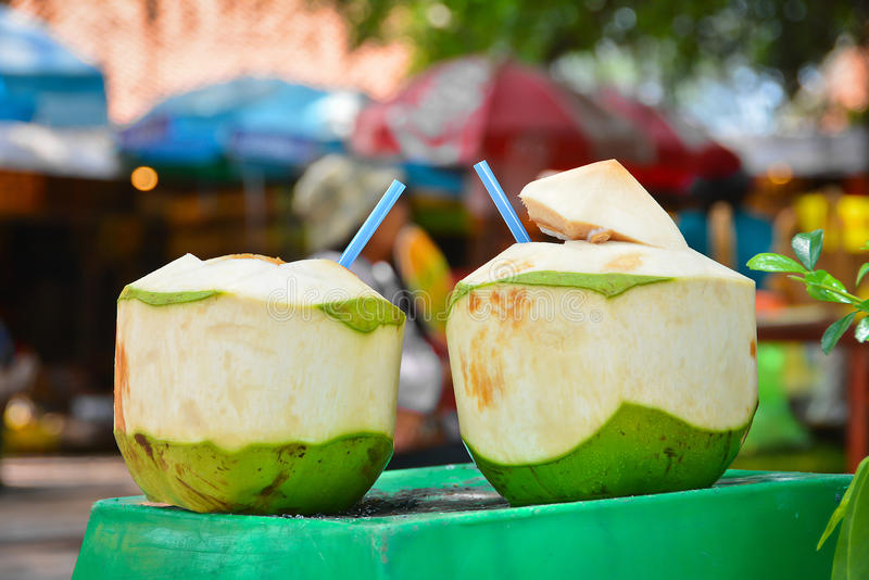 Download Twin Coconuts stock photo. Image of water, detail, coconut - 31057522