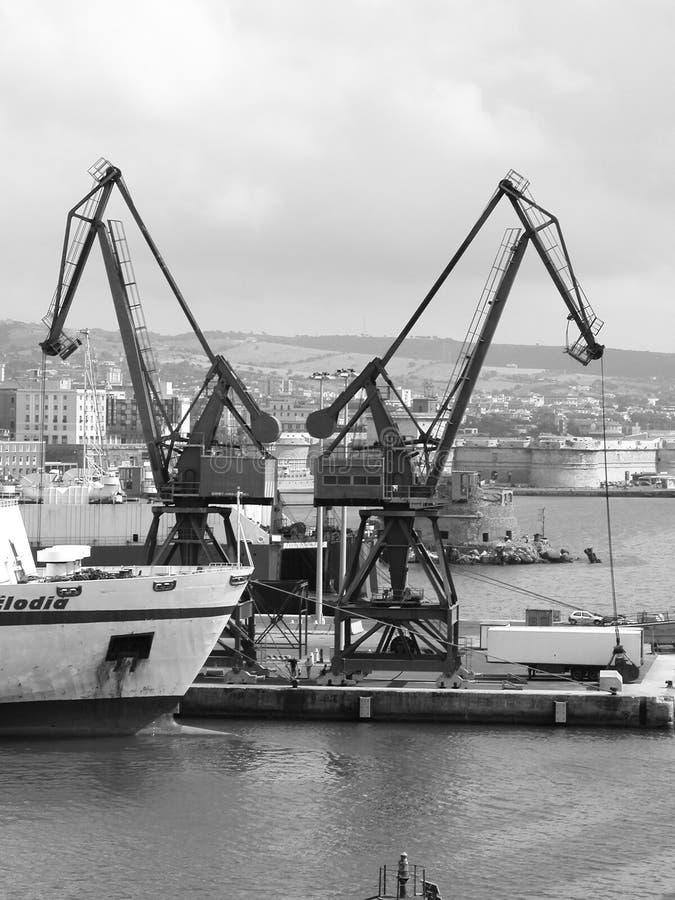 Twin cranes royalty free stock photo
