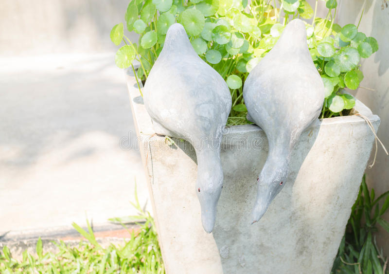 Twin ducks of plaster decorated in garden stock photo