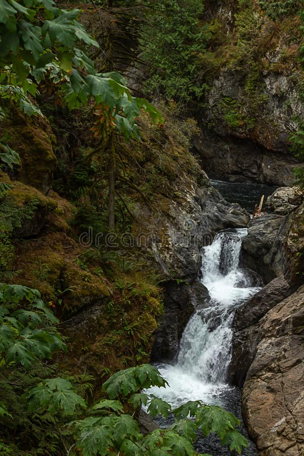 Twin fall in pacific northwest washington during august. Twin fall in pacific northwest washington forest during august stock photo
