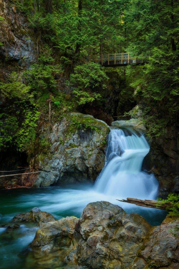 Twin Falls en Lynn Canyon Park, Vancouver del norte, Canadá imagen de archivo libre de regalías