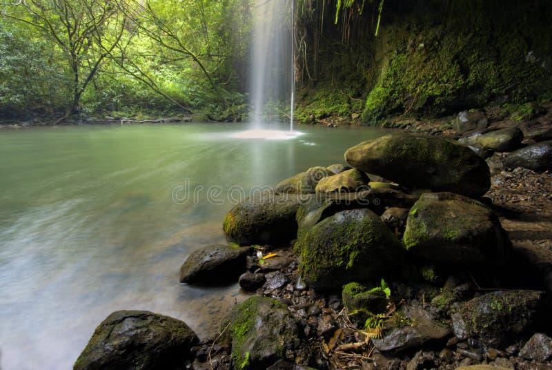 Twin Falls, paseo del cortocircuito del camino a Hana, Maui, Hawaii foto de archivo