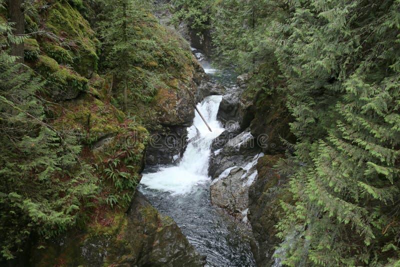 Twin Falls (Washington) fotografie stock