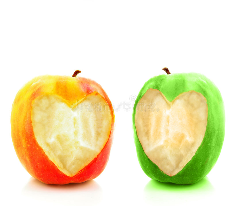Twin hearts royalty free stock image