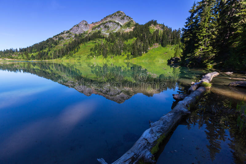 Twin lake. S in Mt.Baker Recreational Area,Washington, USA royalty free stock images