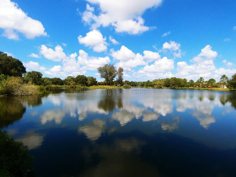 Twin Lakes Park in Sarasota Florida under a bright sunny blue sky with white fluffy clouds a lake and trees. Twin lakes park in Sarasota Florida, with live oak stock photo