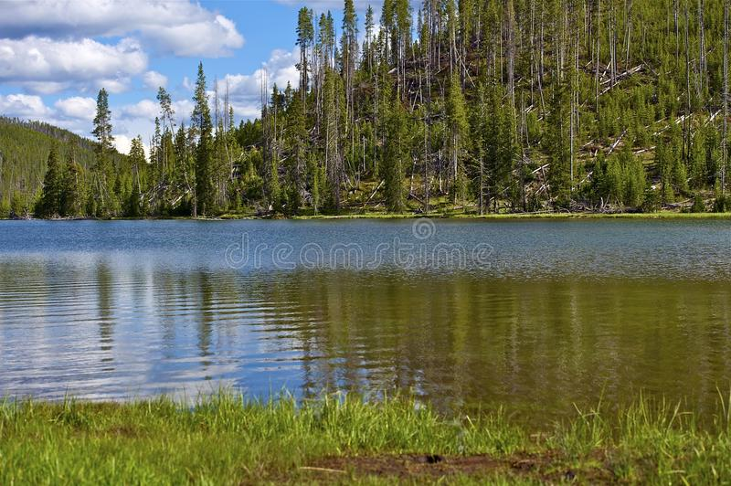 Download Twin Lakes Yellowstone stock photo. Image of twin, grass - 27877166