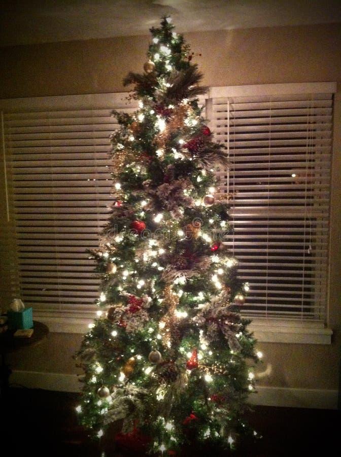 Christmas Tree In Window Stock Image Image Of Window
