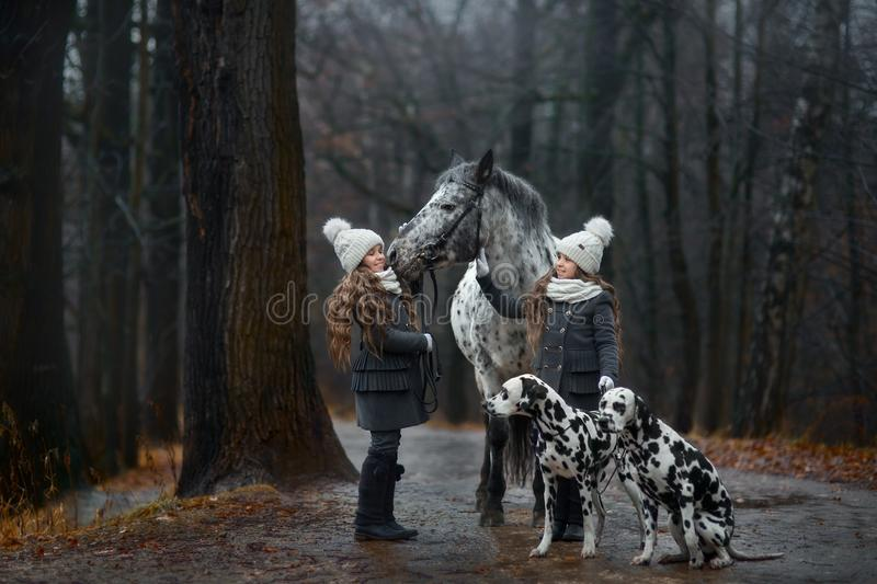 Twins girls portrait with Appaloosa horse and Dalmatian dogs stock images